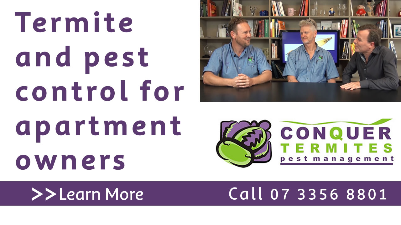 Termite and pest control for apartment owners. Conquer Termites North Side