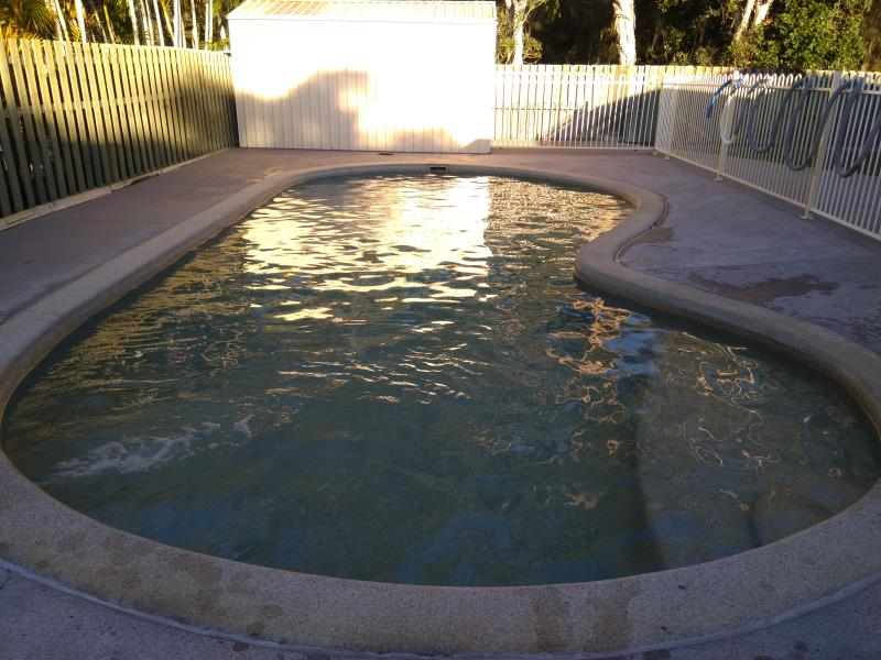 pool cleaners Helensvale