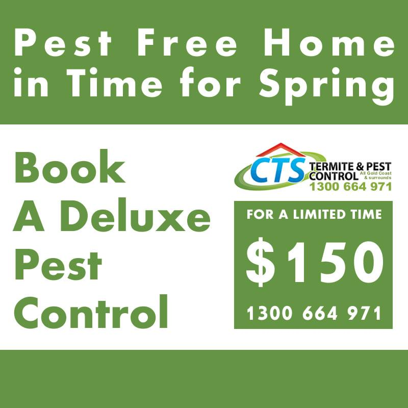 We are offering all our existing CTS Termite and Pest Control clients a deluxe pest control, that's the best treatment you can get for $150.