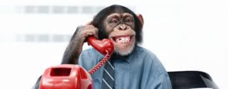 Stop monkeying with our phones