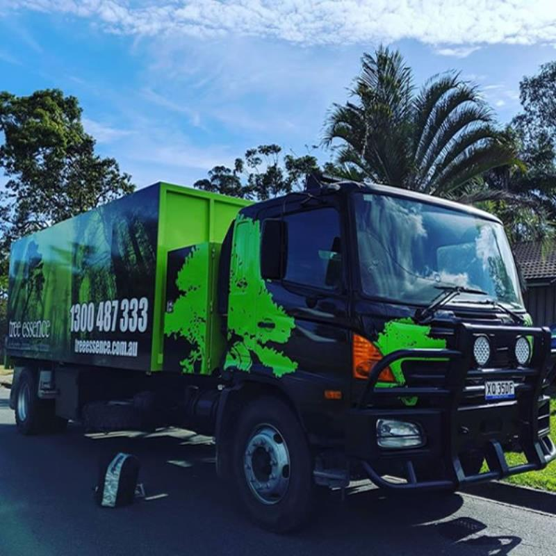tree services gold coast