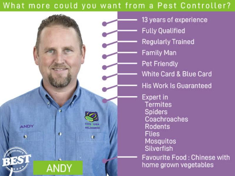 Have You Met Andy?