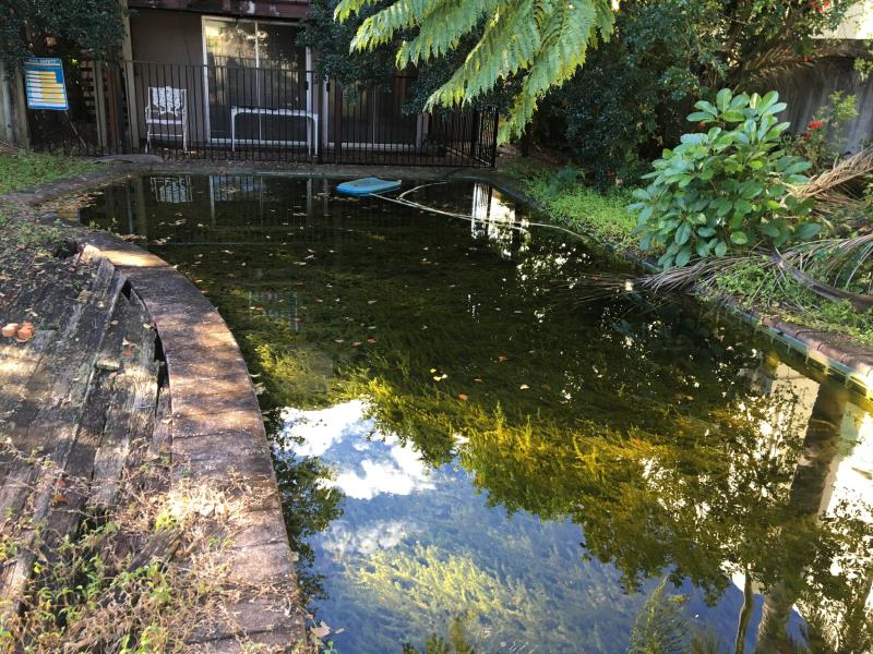 Green pool gold coast cleaning