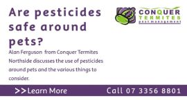 Are pesticides and termiticides safe around pets with Alan Ferguson from Conquer Termites