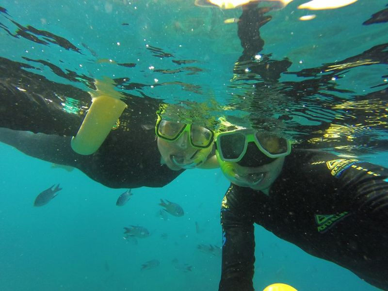 Airlie Beach Tours | Snorkelling from Airlie Beach