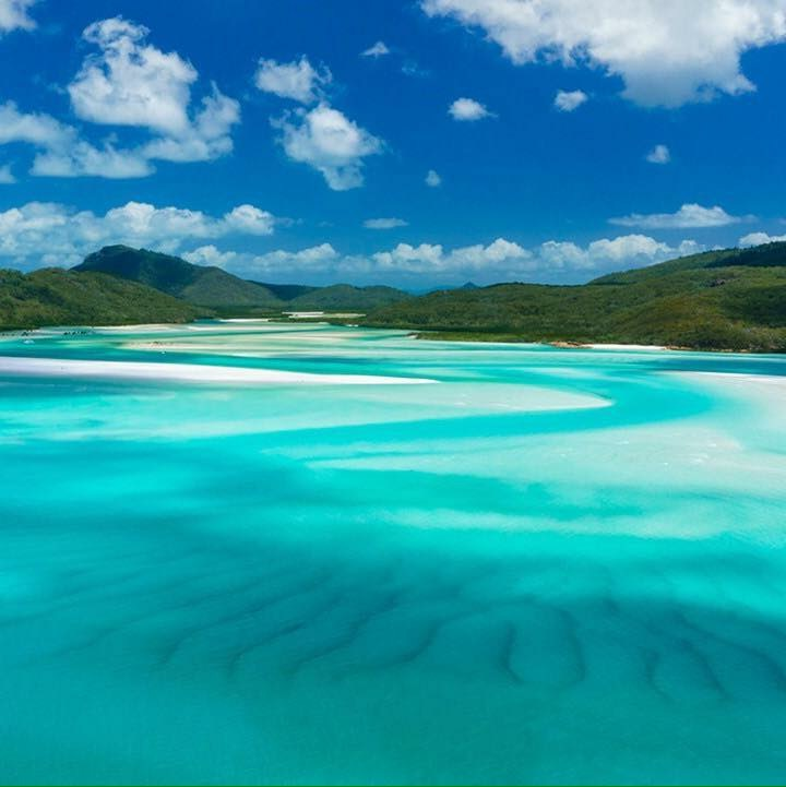 Airlie Beach Tours | Whitehaven Beach Tours.