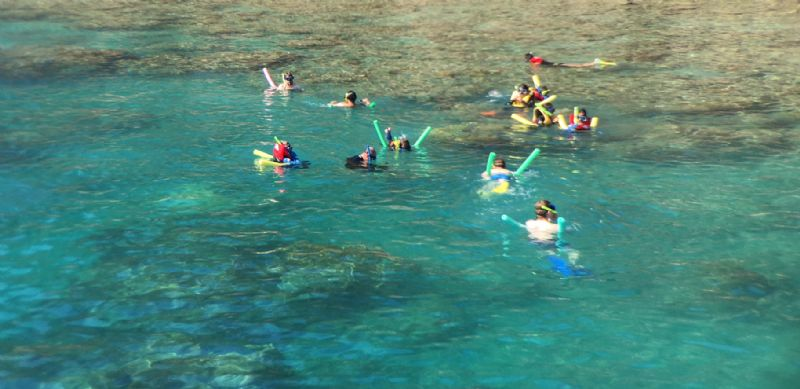 Whitehaven Beach Day Tours | Snorkeling Airlie Beach