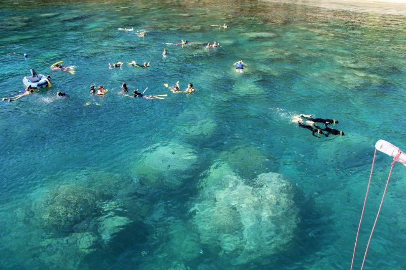 Airlie Beach Day Trips - Airlie Beach Snorkeling