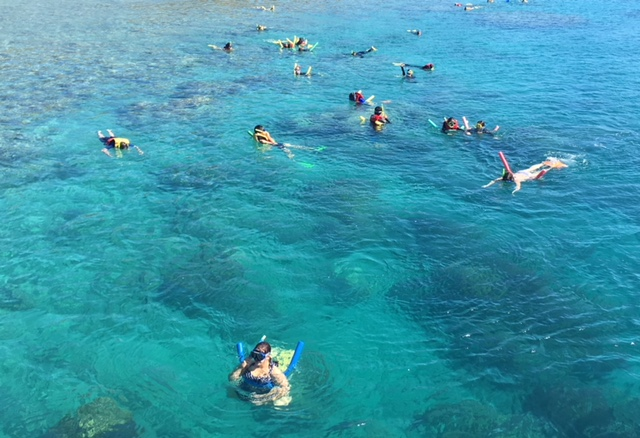 Airlie Beach Snorkeling | Tour Whitehaven Express.