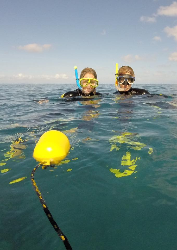 Snorkeling Airlie Beach | Whitsunday Xpress.