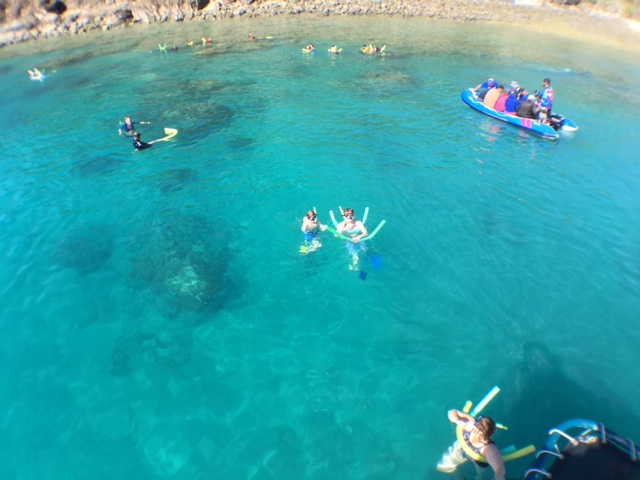 Snorkeling & Glass Bottom Boat | View from Flybridge