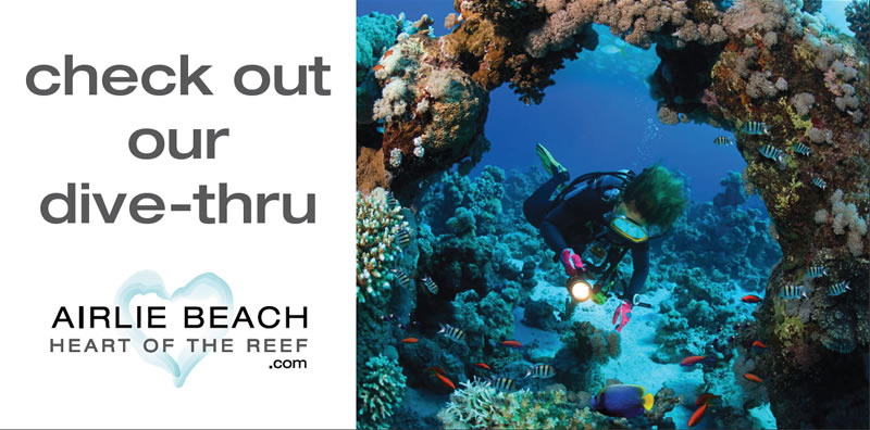 Check out our dive thru