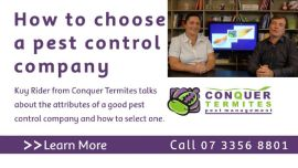How to choose a pest control company - Kuy Rider