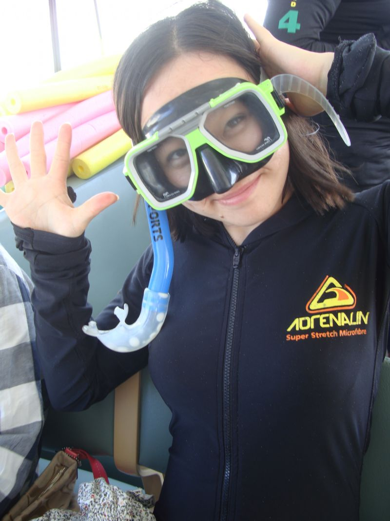 How do I do snorkeling from Airlie Beach