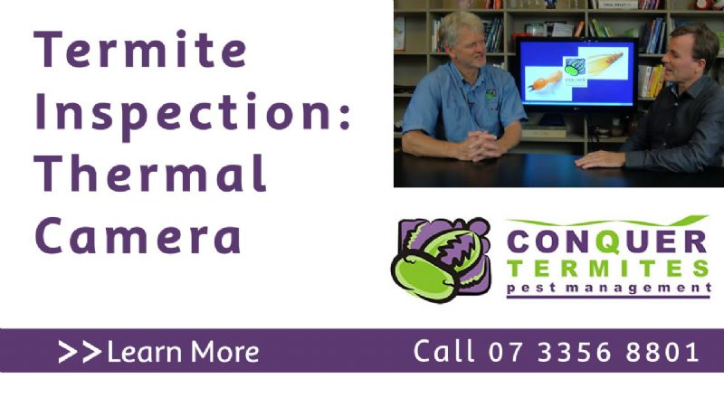 Termite inspection tools - Thermal Camera. Alan Ferguson, Conquer Termites Northside