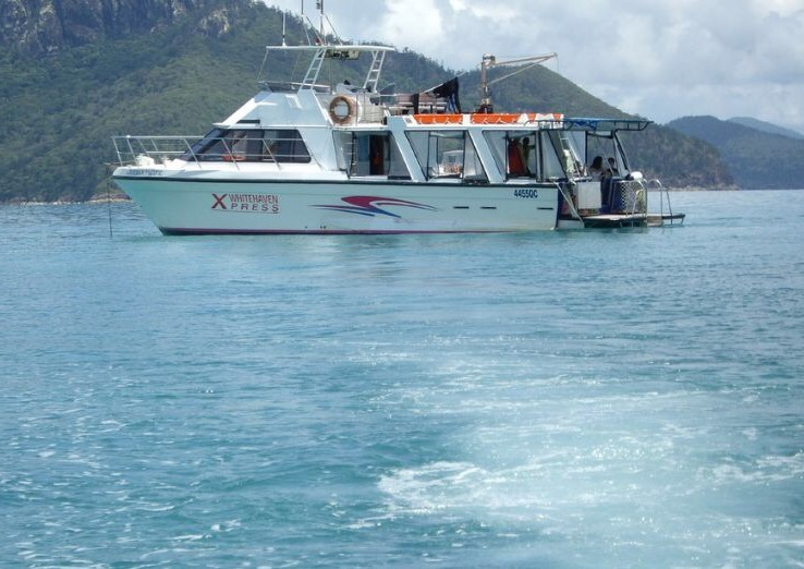 1 Day Whitehaven Xpress Beach and Mantaray Bay Tour from Airlie Beach