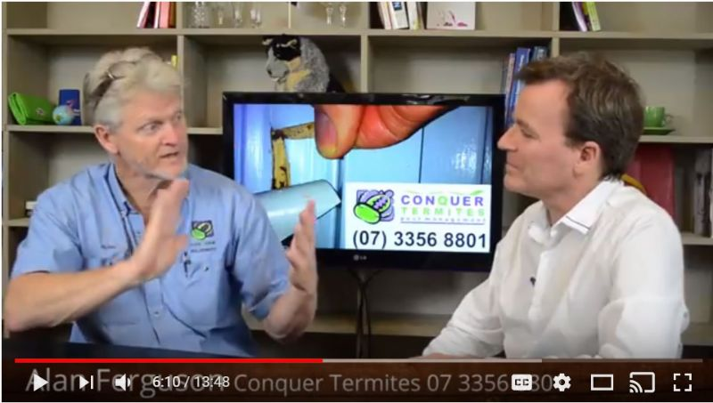 Termite Talk - How to check around the home for Termites