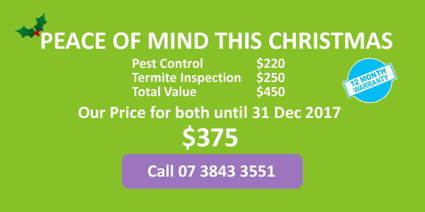 Pest Control AND Termite Inspection $375 until 31 December